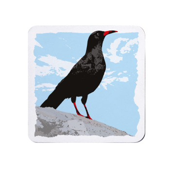 Cornish Chough Coaster - Melamine - Cornwall Vibes