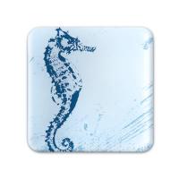 Glass Coaster - Seahorse