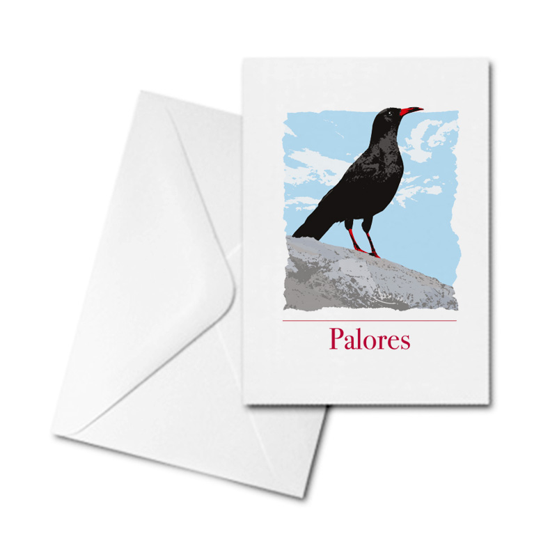 Blank Greetings Card - Cornish Chough - Palores