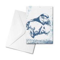 Blank Card - Puffin