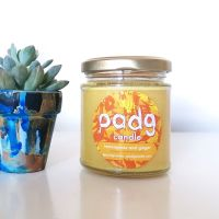 Handmade Plant Based Candle - Lemongrass and Ginger