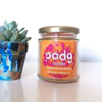 Handmade Plant Based Candle - Mandarin and Sandalwood