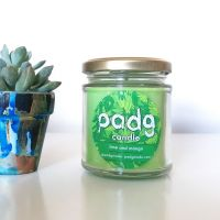 Handmade Plant Based Candle - Lime and Mango