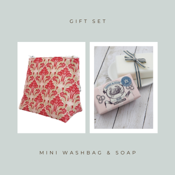 Mini Washbag & Soap