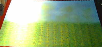 BC004 - Corn Wall (30w x 14h)