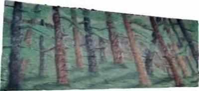 BE007 -Woodland Glade (30w X 14h)
