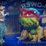 little shop of horrors - t10 - a1stage scenery and set hire for