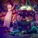 little shop of horrors - t16 - a1stage scenery and set hire for