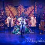 little shop of horrors - t19 - a1stage scenery and set hire for