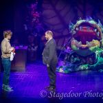 little shop of horrors - t53 - a1stage scenery and set hire for