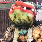 little shop of horrors - t56 - a1stage scenery and set hire for