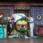 LITTLE SHOP OF HORRORS - A1 STAGE SCENERY AND SET HIRE FOR - 08a