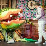 LITTLE SHOP OF HORRORS - A1 STAGE SCENERY AND SET HIRE FOR - 13b
