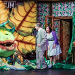 LITTLE SHOP OF HORRORS - A1 STAGE SCENERY AND SET HIRE FOR - 17b