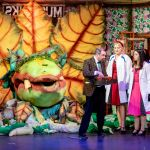LITTLE SHOP OF HORRORS - A1 STAGE SCENERY AND SET HIRE FOR - 19e