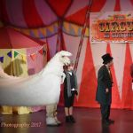 doctor dolittle - 14 - a1 stage scenery and set hire for