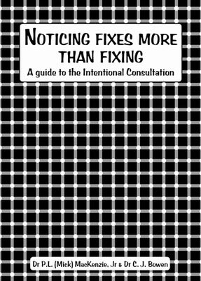 Noticing Fixes More Than Fixing (Book)