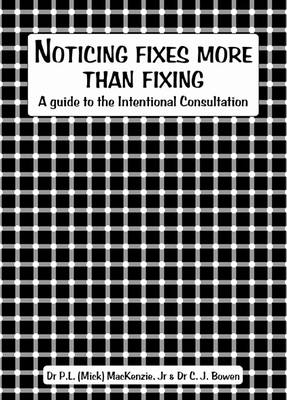 Noticing Fixes more than Fixing (E-book)