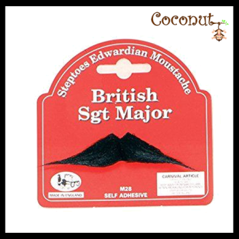 British Sgt Major
