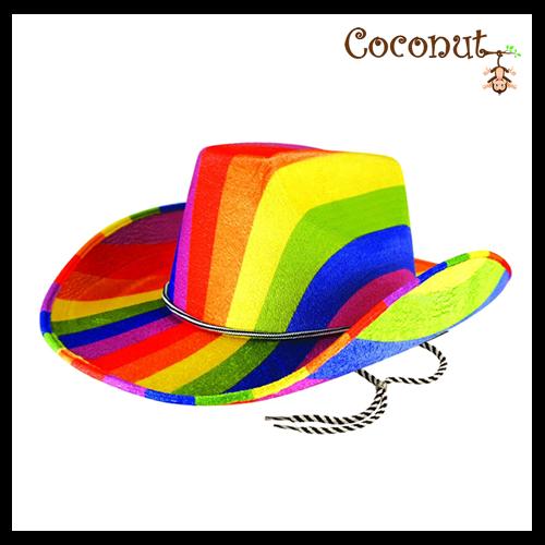 Rainbow Felt Cowboy