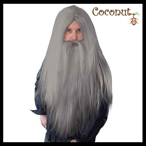 Wizard Wig and Beard - Grey