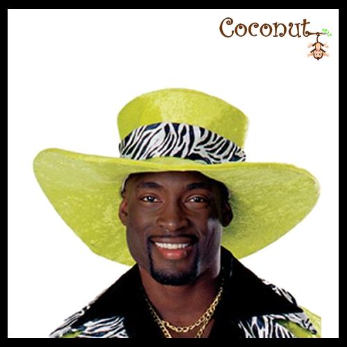 Dr. Styles Pimp Hat