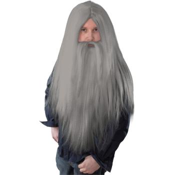 Wizard Grey Wig & Beard