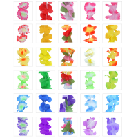 Hula Leis 30 Pack Assorted Colours
