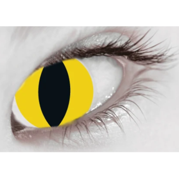 Wild Cat Contact Lenses (Daily)