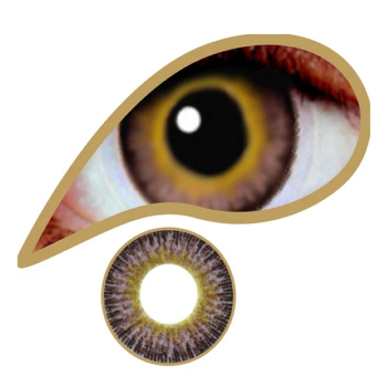 Hazel Bronze Natural Contact Lenses (90 Day)