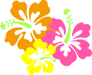 hibiscus-md