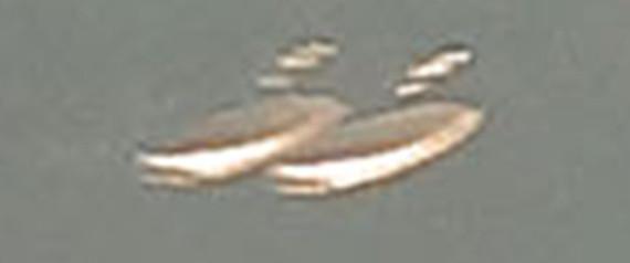 n-LOCH-NESS-UFO-large570