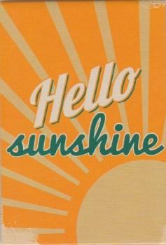 Retro Style Magnet - Sunshine - NEW