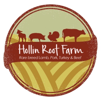 hollin root logo