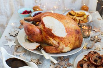 turkey_167