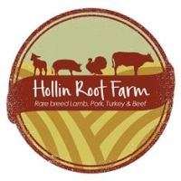 Hollin Root Logo -3