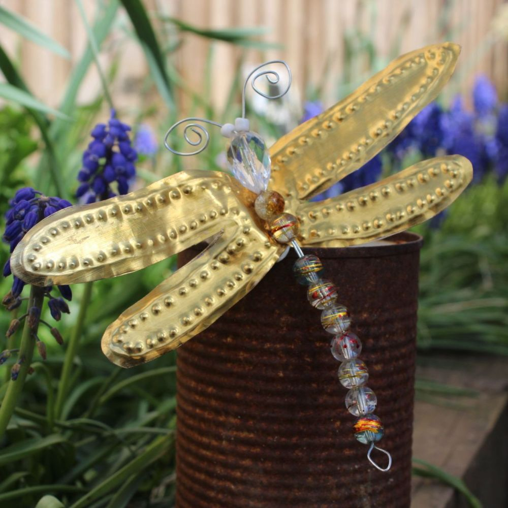 Dragonfly Craft Kit
