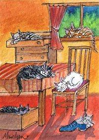 Cats sleep anywhere - art print