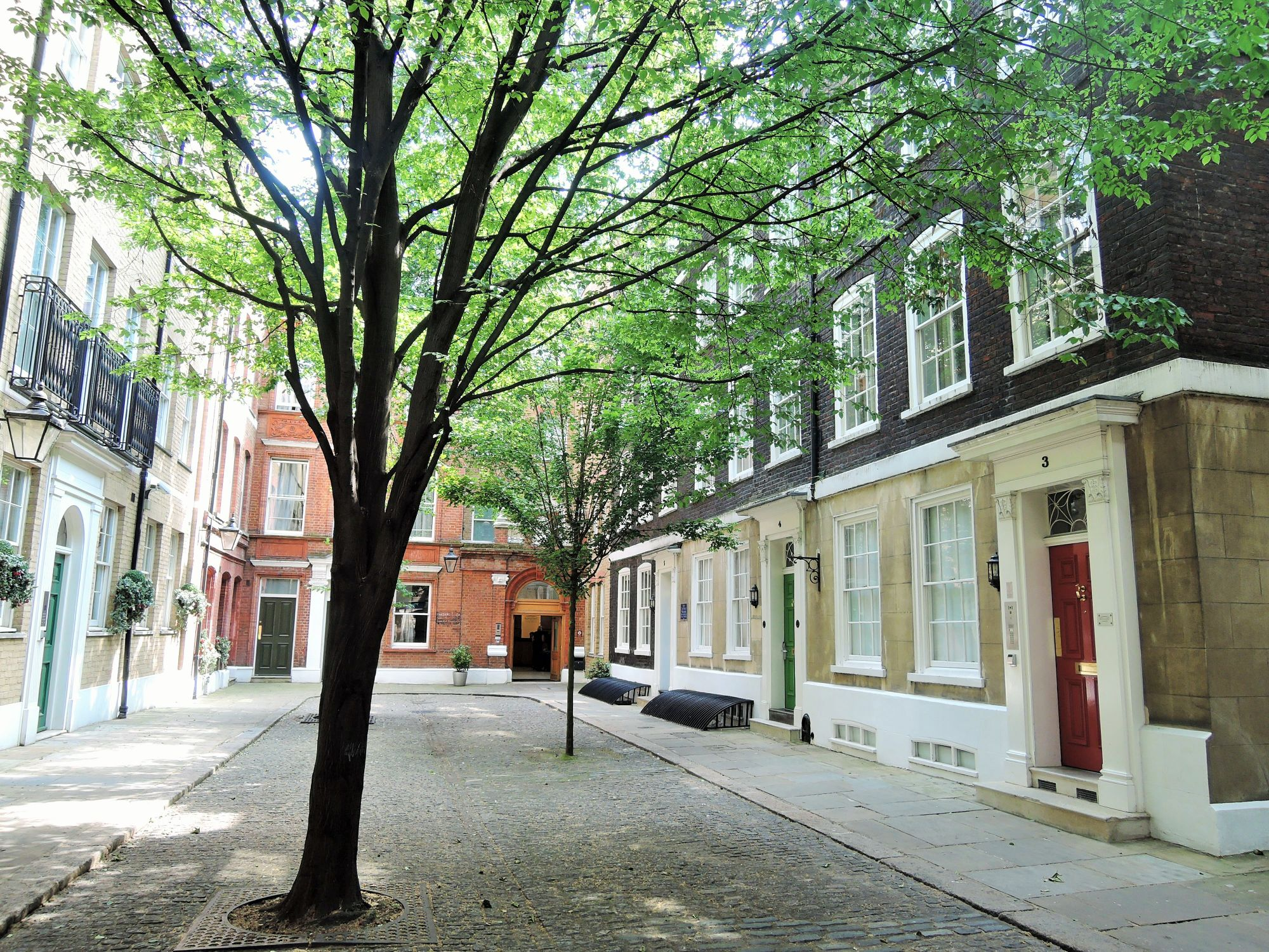 Photo of Wardrobe Place, a small, hidden away court yard. In the centre of the yard are two trees surrounded by elegant townhouses.