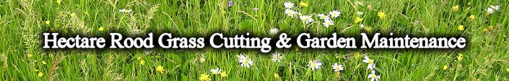 Grass Cutting & Garden Maintenance By Hectare Rood, site logo.