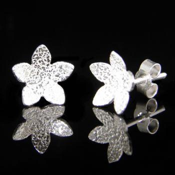 Star Catcher Stud Earrings - BCE2