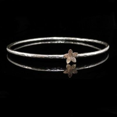 9ct Gold Star Catcher and Silver Bangle - BCB3