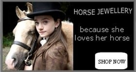 Horse Jewellery / Equestrian