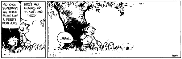 calvin-and-hobbes-2