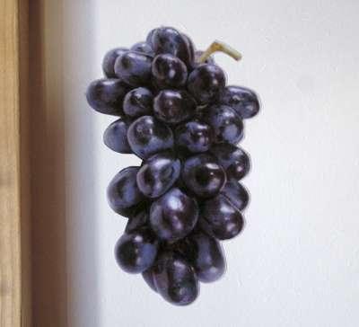 Grapes002-400
