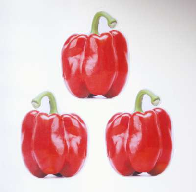 Peppers001-400