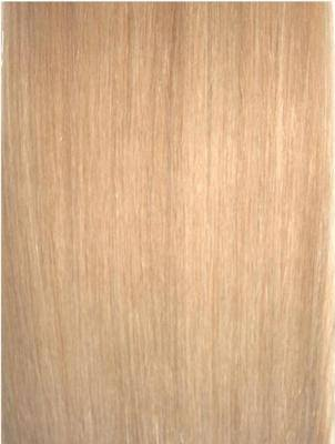 Colour #24 Honey Blonde Remy Elite Hair Clip-ins (Full head)