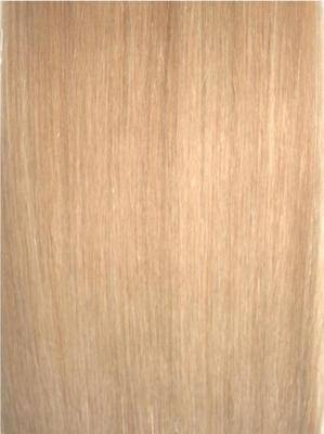 Colour #24 Honey Blonde Remy Elite Hair Clip-ins (half head)