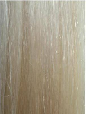 #60 Lightest Blonde Wefts straight