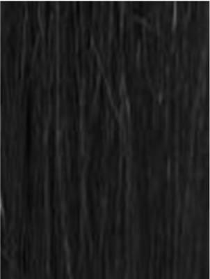 #1 Jet Black Nail Tips